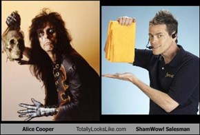 Alice Cooper Totally Looks Like ShamWow! Salesman