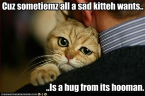 Cuz sometiemz all a sad kitteh wants..