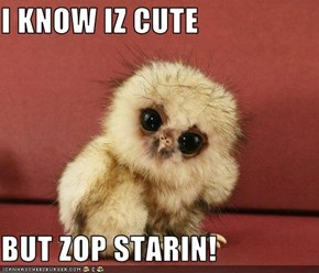 I KNOW IZ CUTE  BUT ZOP STARIN!