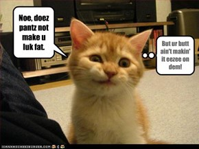 Noe, doez pantz not make u luk fat.