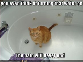 If you even think of turning that water on  The pain will never end