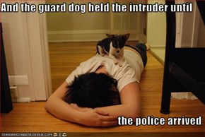 And the guard dog held the intruder until                                                         the police arrived
