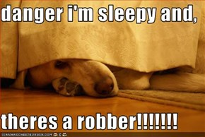 danger i'm sleepy and,  theres a robber!!!!!!!