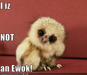 I iz NOT an Ewok!