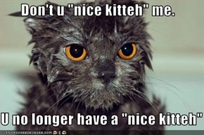 "Don't u ""nice kitteh"" me.  U no longer have a ""nice kitteh"""