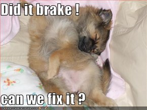 Did it brake !  can we fix it ?