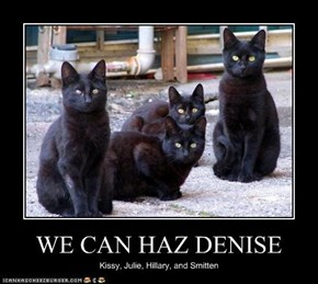 WE CAN HAZ DENISE