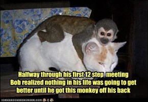 Halfway through his first 12 step  meeting  Bob realized nothing in his life was going to get better until he got this monkey off his back