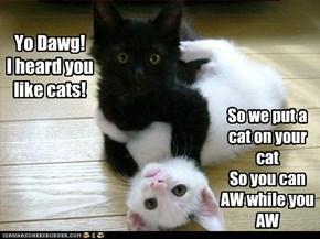 Yo Dawg! I heard you like cats!