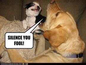 SILENCE YOU FOOL!