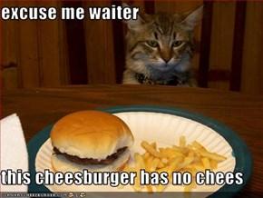 excuse me waiter  this cheesburger has no chees