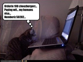 Orderin 100 cheezburgerz... Paying wif... my humans visa... Numberiz 50282...
