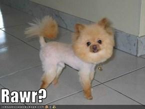 Rawr?