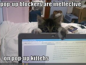 pop-up blockers are ineffective     on pop-up kittehs