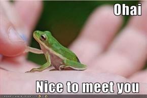 Ohai  Nice to meet you