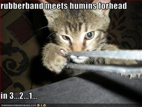 rubberband meets humins forhead  in 3...2...1...