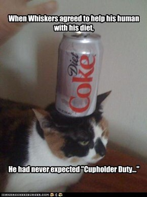 When Whiskers agreed to help his human with his diet,