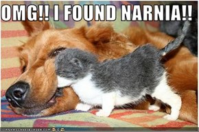 OMG!! I FOUND NARNIA!!