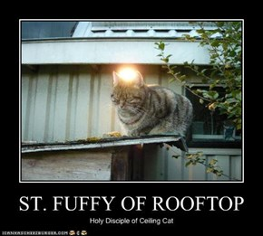 ST. FUFFY OF ROOFTOP