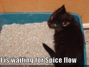 I is waiting for Spice flow