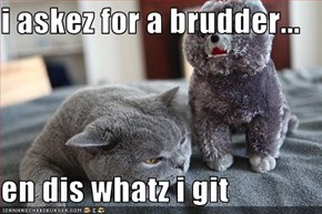 i askez for a brudder...  en dis whatz i git