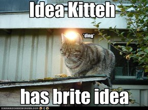 Idea Kitteh