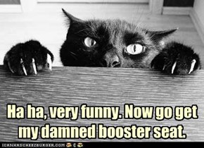 Ha ha, very funny. Now go get my damned booster seat.