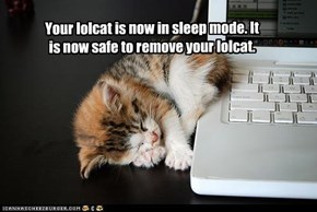 Your lolcat is now in sleep mode. It is now safe to remove your lolcat.