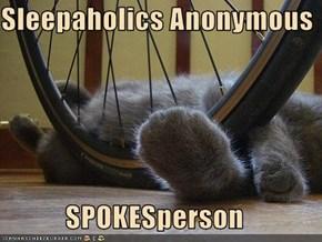 Sleepaholics Anonymous  SPOKESperson