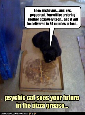 psychic cat sees your future  in the pizza grease...