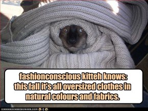 fashionconscious kitteh knows:  this fall it's all oversized clothes in natural colours and fabrics.