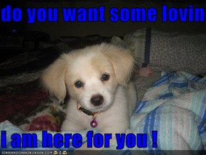 do you want some lovin  i am here for you !