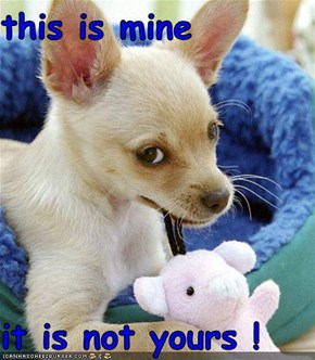 this is mine   it is not yours !