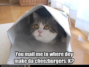 You mail me to where dey  make da cheezburgers, K?