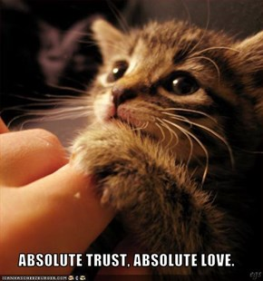 ABSOLUTE TRUST, ABSOLUTE LOVE.
