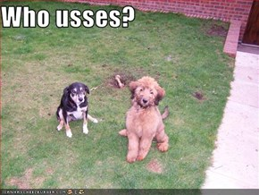 Who usses?
