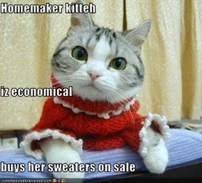 Homemaker kitteh iz economical buys her sweaters on sale