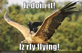 Iz doin it!  Iz rly flying!