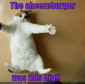 The cheezeburger         was this big!!
