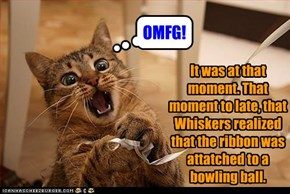It was at that moment. That moment to late, that Whiskers realized that the ribbon was attatched to a bowling ball.