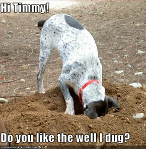 Hi Timmy!  Do you like the well I dug?