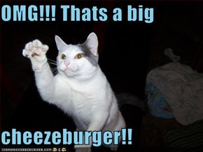 OMG!!! Thats a big   cheezeburger!!