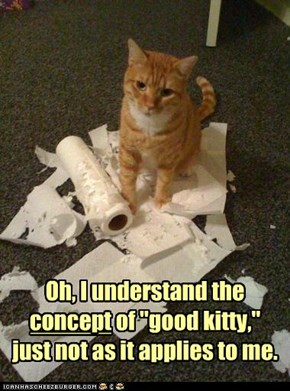 "Oh, I understand the  concept of ""good kitty,""  just not as it applies to me."