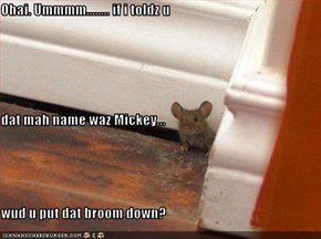 Ohai. Ummmm........ if i toldz u dat mah name waz Mickey... wud u put dat broom down?