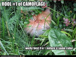 ROOL #1 of CAMOFLAGE