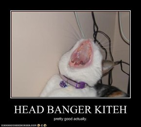 HEAD BANGER KITEH