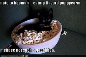 note to hooman ... catnip flavurd poppycorm   mebbee not such a good idea.