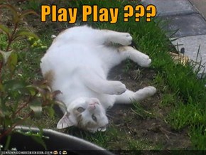 Play Play ???