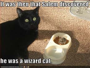 It was then that Salem discovered  he was a wizard cat.