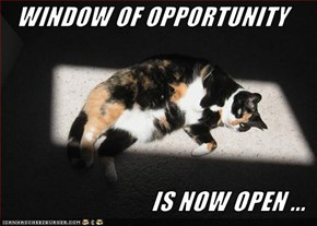 WINDOW OF OPPORTUNITY  IS NOW OPEN ...